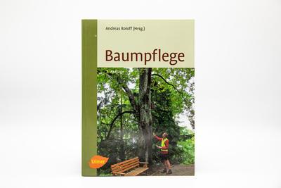 Baumpflege Grundlagen und Anwendung
